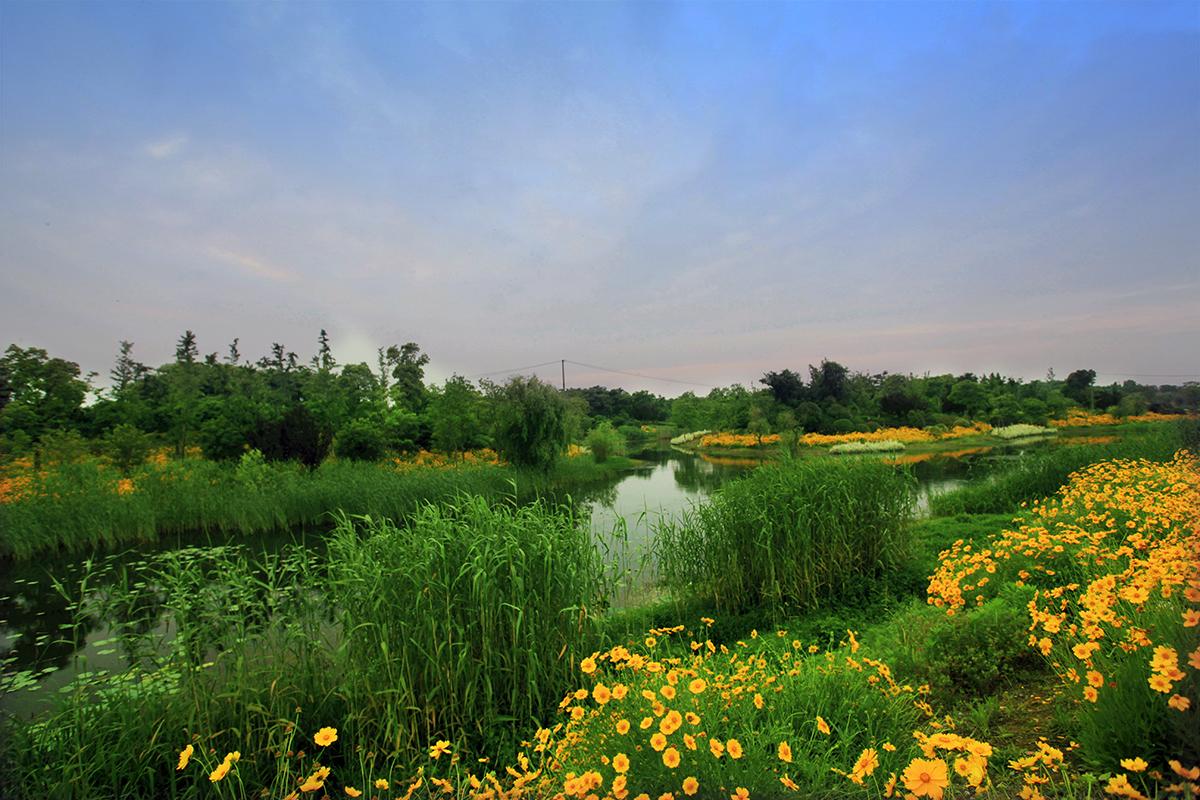 贡湖湾湿地.jpg